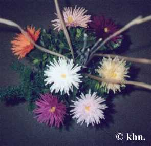 Dahlien, Chrysanthemen